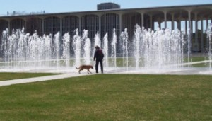 student working with dog in a plaza