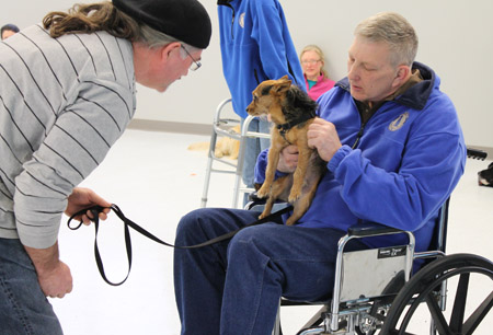 dog being socialized to people in wheelchairs