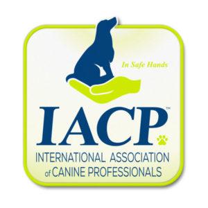 IACP (new)