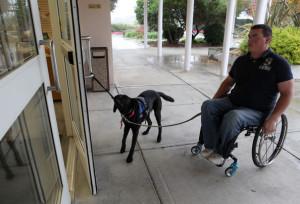Service dog pic2