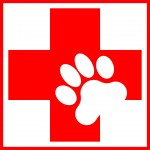 Canine First Aid Manual